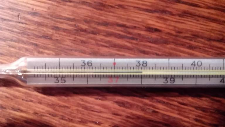 Температура 38 и кашель у взрослого, что делать
