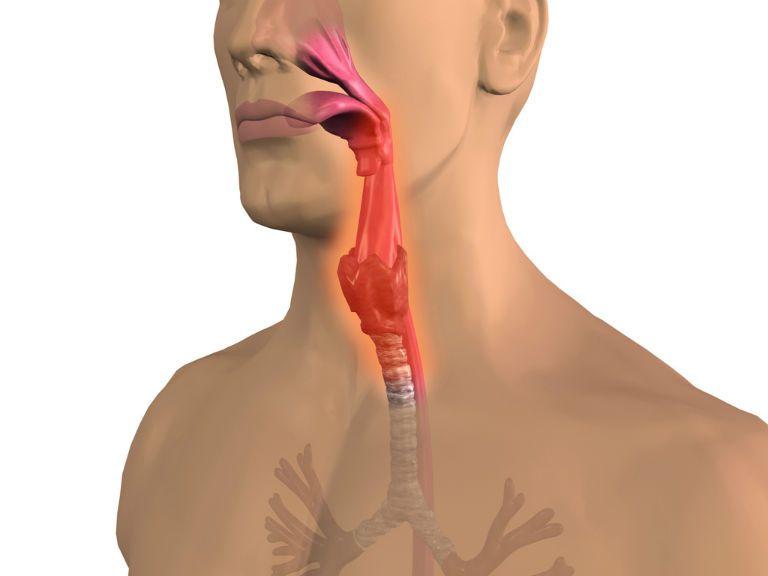 Воспаление носоглотки, симптомы и лечение у детей и взрослых