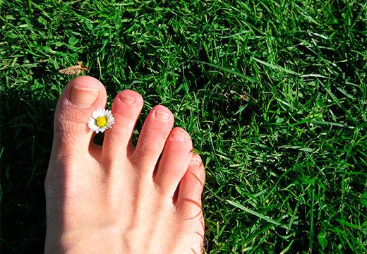 ступня на траве