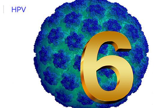 6 штамм ВПЧ