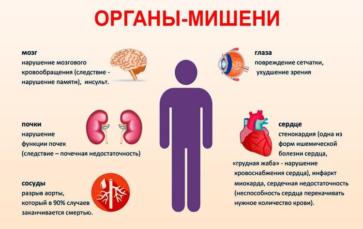 Органы мишени при развитии гипертонии