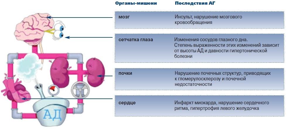 Влияние приступа на организм