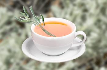 Чай из полыни