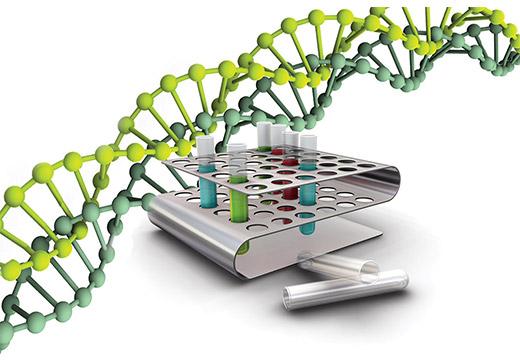 Молекулярное исследование на ВПЧ