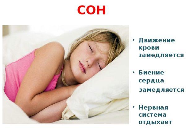 Пульс во сне